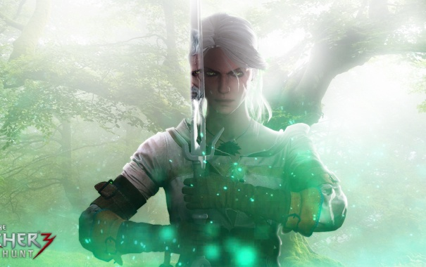 Фото обои девушка, меч, geralt, Witcher, The Witcher 3: Wild Hunt, Wild Hunt, Geralt of Rivia
