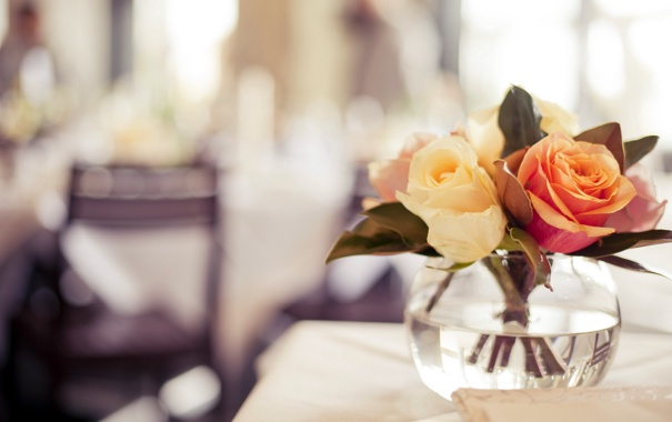 Фото обои макро, фон, розы