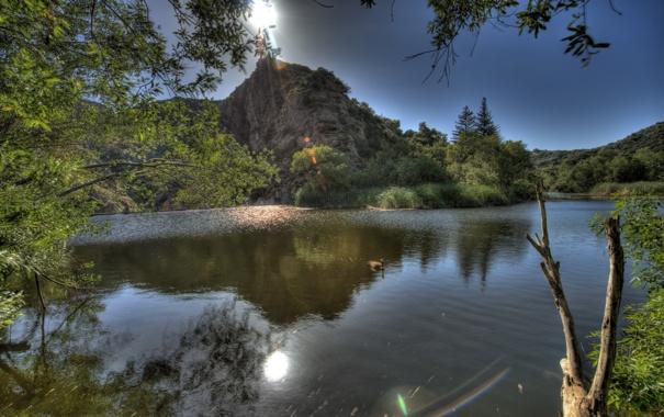 Фото обои солнце, озеро, блики, холмы, дервья