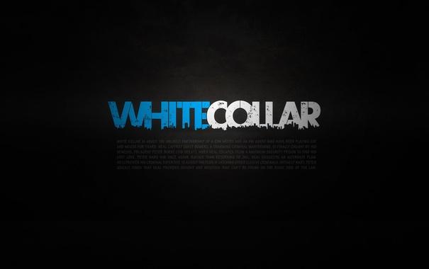 Фото обои обои, сериал, wallpapers, белый воротничок, white collar