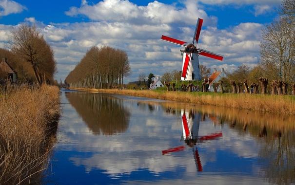 Фото обои деревья, дома, канал, Бельгия, Фландрия, ветряная мельница