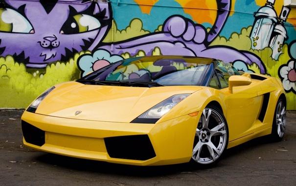 Фото обои машина, авто, кошка, тачка, рыжая, gallardo, графити