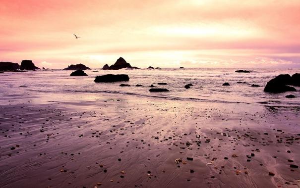 Фото обои закат, природа, океан, побережье