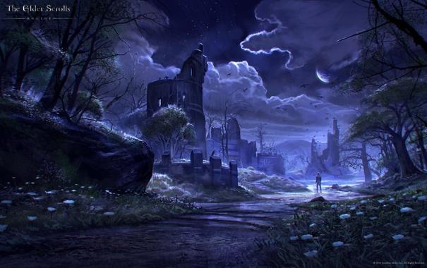 Фото обои ночь, река, ручей, человек, башня, руины, The Elder Scrolls Online