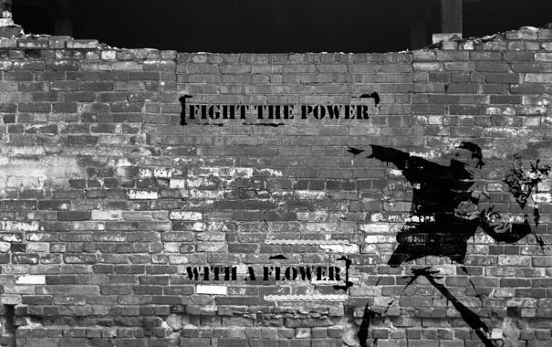 Фото обои цветы, стиль, стена, надпись, граффити, кирпич, мужчина