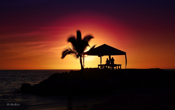 Фото обои закат, пальма, Chill Out