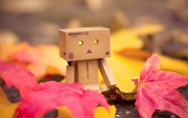 Фото обои осень, листья, коробка, Danbo, amazon, коробок