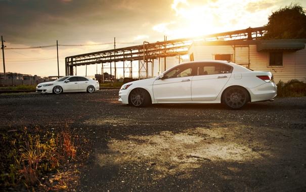 Фото обои белая, honda, хонда, accord, Tuning, аккорд, acura