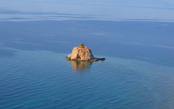 Фото обои остров, море, дерево