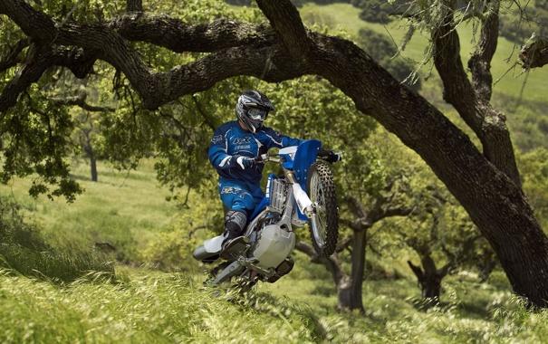 Фото обои колесо, прыжок, гонщик, ямаха, дерево