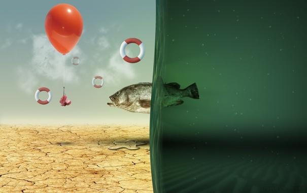 Фото обои креатив, рыба, зелёный