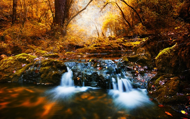 Фото обои Water, Autumn, Yellow, Rocks, Trees, Long, Brook