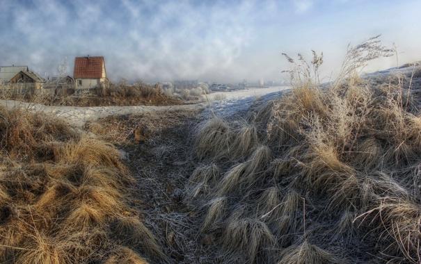 Фото обои иней, трава, город, дом