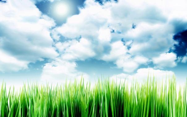 Фото обои небо, облака, травка, Sky Over The Grass