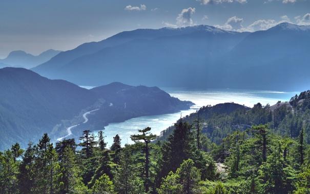 Фото обои море, зелень, лес, небо, вода, облака, деревья