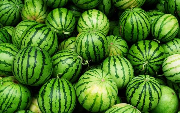 Фото обои green, fruit, watermelon