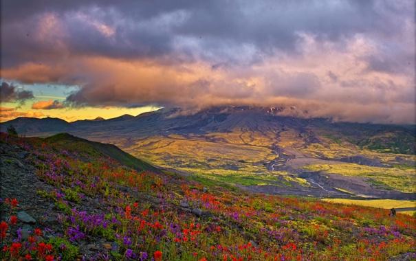 Фото обои облака, цветы, горы, поля, простор, луга