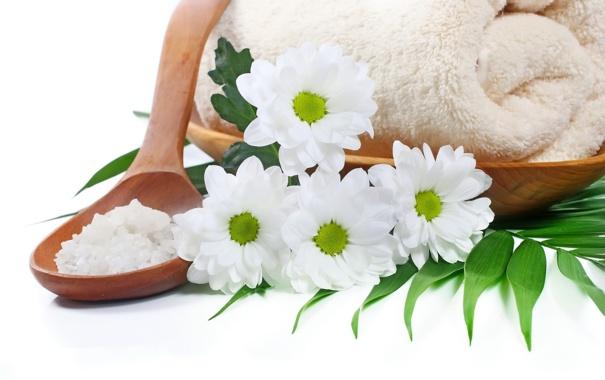 Фото обои цветы, ромашки, relax, flowers, спа, daisy, spa