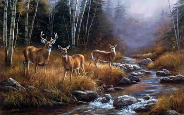 Фото обои лес, пейзаж, туман, река, ручей, октябрь, живопись