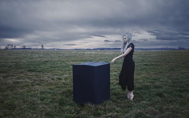 Фото обои поле, девушка, коробка, платье