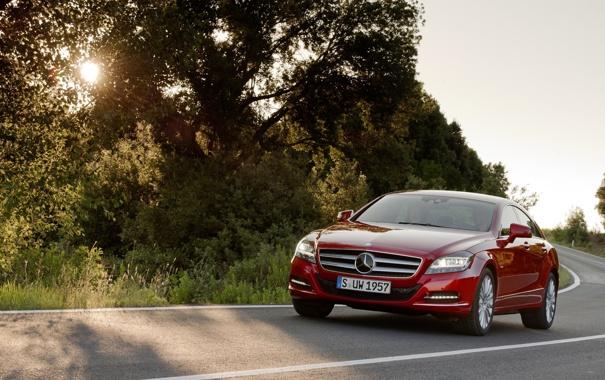 Фото обои дорога, солнце, свет, деревья, widescreen, дороги, Mercedes