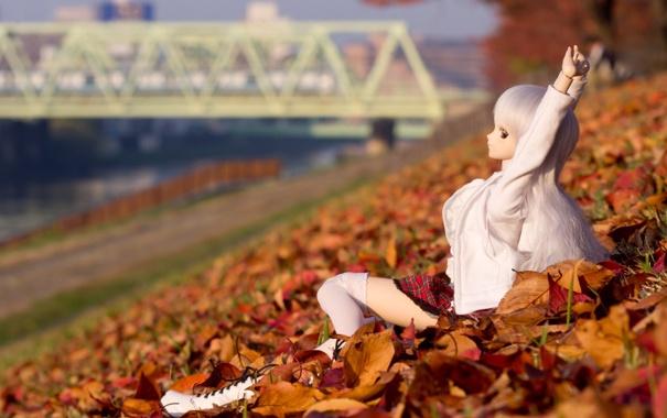 Фото обои листья, мост, природа, игрушка, кукла, руки, сидит