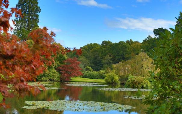 Фото обои осень, небо, облака, деревья, пруд, парк