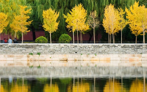 Фото обои осень, листья, деревья, отражение, Китай, Пекин, Запретный город