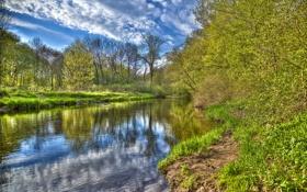 Картинка лес, небо, трава, облака, деревья, река, весна