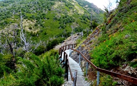 Картинка горы, ландшафт, спуск, мостик, Аргентина, Patagonia