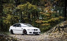 Картинка осень, листья, BMW, white, E46
