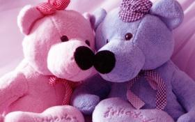 Картинка мишки, праздники, Валентинка, День Святого Валентина, Teddy bear, Валентин
