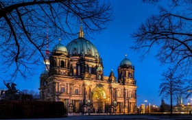 Обои деревья, ночь, ветки, город, вечер, Германия, церковь