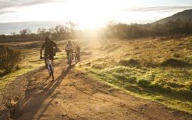 Обои солнце, природа, утро, велосипедисты