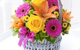 Обои день рождения, корзина, лилии, букет, Розы, герберы