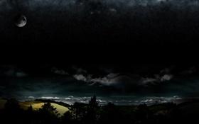 Обои деревья, ночь, природа, фото, фон, обои, пейзажи