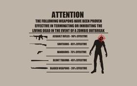 Обои zombie, Guide zombie survival, effective