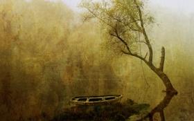 Обои вода, туман, дерево, лодка, картина