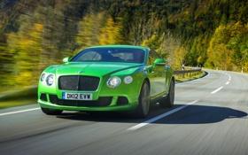 Обои Bentley, Continental, Зеленый, Машина, Капот, Бентли, Фары