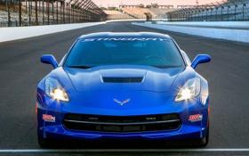 Обои синий, фары, Corvette, Chevrolet, передок, Stingray, Pace Car