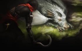 Обои оружие, дракон, арт, спит, убийца, серп, Ahmad Reza Rizkiyuda