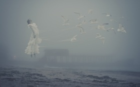 Картинка море, девушка, туман, берег, чайки