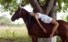 Обои девушка, настроение, конь