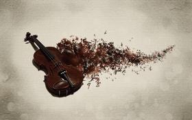 Обои ноты, музыка, фон, скрипка, след, музыкальный инструмент