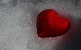 Обои снег, сердце, день, всех, тает, влюблённых