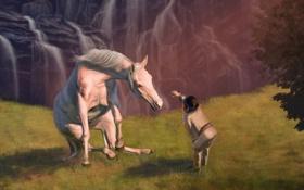 Обои лошадь, трава, индеец, скала, masterBo, природа, водопад