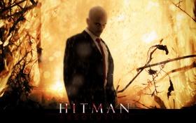 Картинка игра, Hitman, absolution