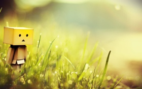 Картинка трава, макро, коробка, Danbo, боке, amazon, Boxman