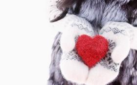 Картинка зима, любовь, сердце, love, heart, winter, варежки