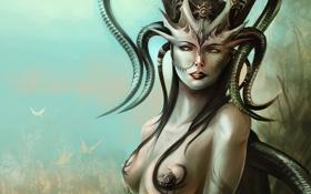 Обои украшения, бабочки, женщина, волосы, рога